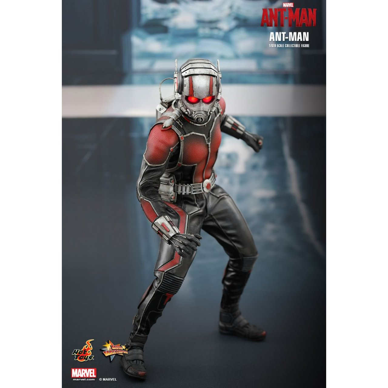 Hot Toys 16 Ant Man Figure Looks Awesome Disposable Media 1 6 Antman Scale Collectible 4206232